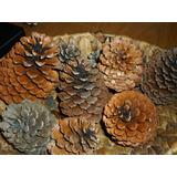 Piñas De Pino-ideal Horno De Barro-salamandras-hogares-decor