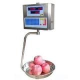 Balanza Electrónica Liquidadora Colgante Bbg (brangus) 30kg