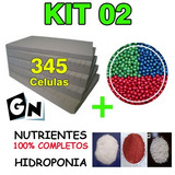 02 Kit Para Hidroponia Sementes Peletizadas Espuma Nutriente