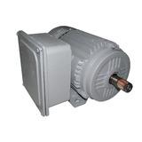 Motor 3cv Blindado 3450 Rpm Alta Rotação