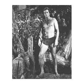 Tarzan - São 19 Dvds Com Ron Ely(51 Filmes Dublados)