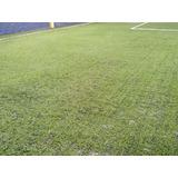Grama Sintética Sportgrass Duo - Campo De Futebol Instalado