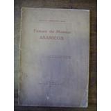 Tema De Museo Abanico H Arredondo Hijo Siglo Ilustrado 1928