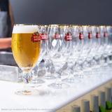 Copas Stella Artois 330ml - Pack 6 Unidades