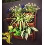 Huertas Jardinera Rustica De Madera Colgante Con Plantas