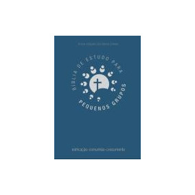 Bíblia De Estudos Para Pequenos Grupos - Azul - Editora Vida
