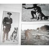 Historia De La Policia Federal Con Fotos De Ayer Y Hoy