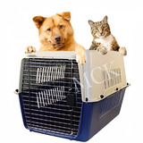 Mascotas Guacal Caja Perros,gatos,animales,viajes,huacal N2