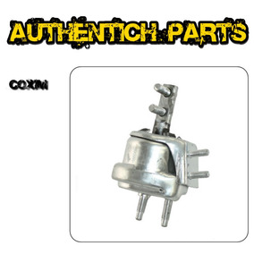 Coxim Hidraulico Do Motor Direito Escort Zetec 1.8 97 À 02