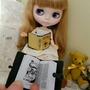 Livro Miniaturas Biblia De Bonecas Blythe,barbie,pullip Dal
