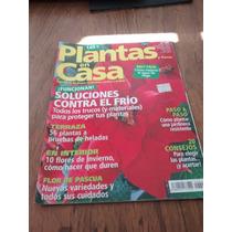 Plantas En Casa #46 - Soluciones Contra El Frío