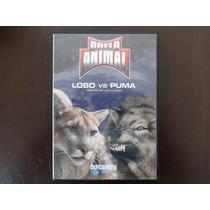 Dvd Duelo Animal Lobo Vs Puma