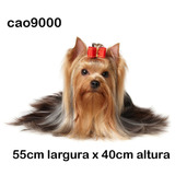 Adesivo Cachorro Raça Yorkshire Peludinho Fêmea Cao9000