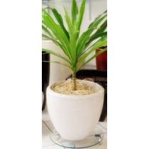 Vaso Para Plantas Cachepot Estilo Ceramica Vietnamita/ Fibra