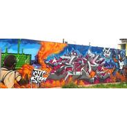 Graffiti, Murales, Banderas, Cuadros, Decorativos, No Vinilo
