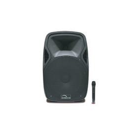 Bafle Amplificado Profesional Marca Radson Mod. Psk-15