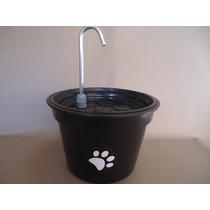 Bebedouro Fonte P/gatos Color, C/patinhas E Filtro, 5 Lts
