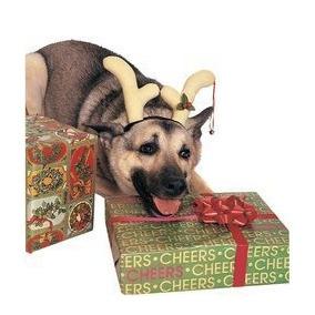 traje de mascotas celada reno del perro