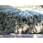 Maderas Tratadas Poste (palo) De Eucaliptus Curado 9 A 12 Cm