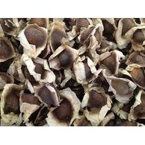 1 Kg Semilla De Moringaoleifera A Exelecte Precio