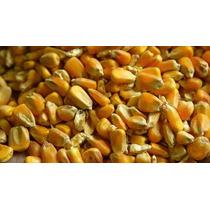 Maiz Entero Gallinas, Aves, Etc. Bolsones 40 Kilos
