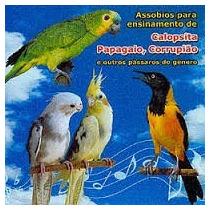 Cd Assoviosparapagaios-calopsitas-corrupião-download Gratis