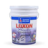Loxon Frentes Impermeabilizante Elastico X 20lts - Prestigio