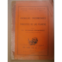 Anomalias Enfermedades Parasitos De Plantas Roman Ramirez 22