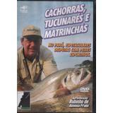 Dvd Pesca Esportiva Pará, Tucunarés, Etc - Rubinho, Lacrado#