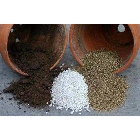 Substrato Carnívora Morango Bonsai Vermicul+perlita+sphagnum