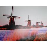 Moinhos De Vento Bombeiam Agua Na Holanda Amsterdam Quadro