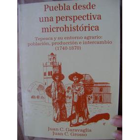 Puebla, Perspectiva Microhistorica. Tepeaca (1740-1870).