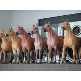 Gado - Resina - Nelore - Cimental - Cavalo - Raça - Lote