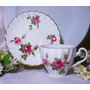 Antigua Taza De Te Porcelana Inglesa Con Rosas