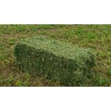 Alfalfas Del Sur (fardos De Alfalfa) Envios