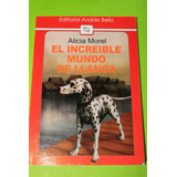 El Increible Mundo De Llanca Alicia Morel