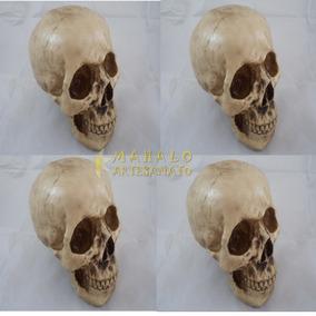 Cranio Grande Tamanho Real Esqueleto Decorar Caveira 4 Und