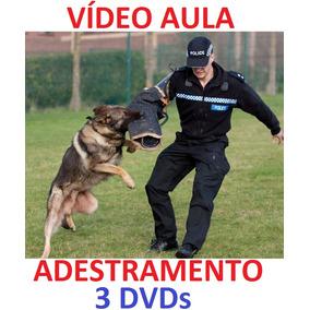Para Todos Os Cães Cachorro Adestramento De Cães Em 3 Dvd