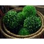 Esfera - Bola De Pasto Artificial 12cm-17cm