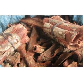 Casca Jatoba Medicinal Original (mato Grosso)