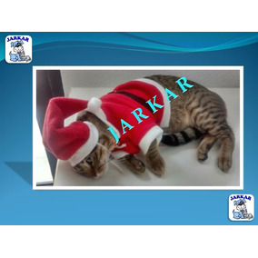 Disfraz De Santa Claus Para Gato / Gatita