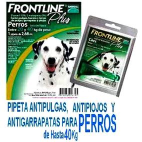 6 Pipetas Frontline Anti Pulgas Perro 40 Kg - Envio Gratis