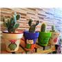 Cactus En Macetas Pintadas A Mano / Souvenirs / Decoración /