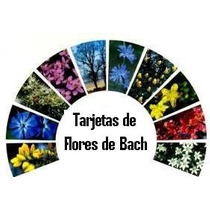 Tarjetas Guia De Flores De Bach Envio Gratis!