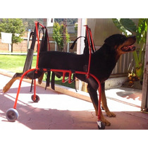 Silla De Ruedas Para Perros Gatos Andadera Carro