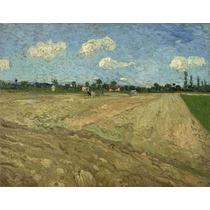Lienzo Campos Arados Vincent Van Gogh Sin Fecha 50 X 64 Cm