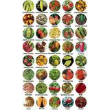 Kit 40 Variedades Sementes De Pimenta Especiais Raras Brinde