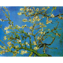Bastidor Impreso En Tela Canvas 40x50cm