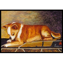 Chihuahua I See Me Interiores O Al Aire Libre Mat 24x36 Mh10