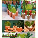 macetas miniatura con cactus artesanales
